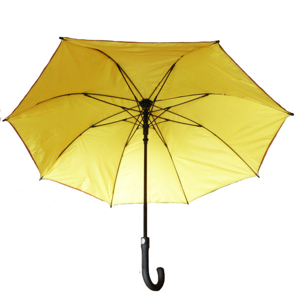 Brown Tyvek umbrella with yellow lining