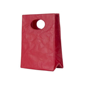 Tyvek Lunch Bags