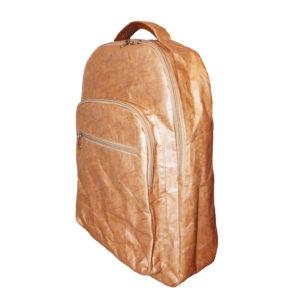 Tyvek Backpack